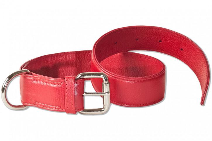 Rimbaldi® Voll-Leder Hundehalsband für mittelgroße Hunde mit 45-55 cm Halsumfang in Rot
